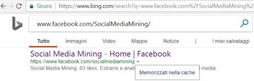 bing-cache-facebook1