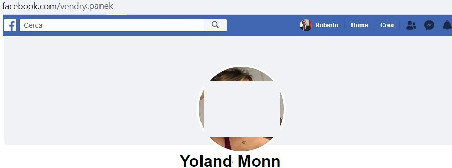 Esempio di profilo falso, con indirizzo URL riguardante un nome diverso da quello sotto la fotografia, con assenza di immagine in copertina.